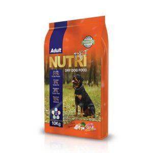 غذا خشک سگ بالغ